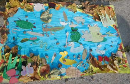 Le scuole in visita al parco for Piante dello stagno
